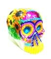 Calaveras de Azucar - Sugar Skulls Dia de Muertos - Extra Large