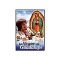 La Virgen de Guadalupe DVD Video en Espanol