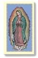 Nuestra Senora de Guadalupe - Virgen de Guadalupe