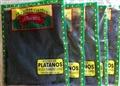 Banana Leaves - Hojas de Platano