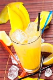 Picture of Manny's Mango Madness Cocktail Recipe - Item No. 485-manny-s-mango-madness
