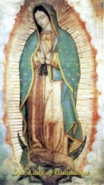 Picture of Our Lady of Guadalupe Laminated Holy Card with Prayer on reverse side - Item No. 61005
