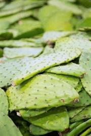 Picture of Vigil Soup Mexican Recipe - Receta Sopa de Vigilia - Item No.639-vigil-soup