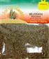 Mejorana- Marjoran Herb by El Sol de Mexico